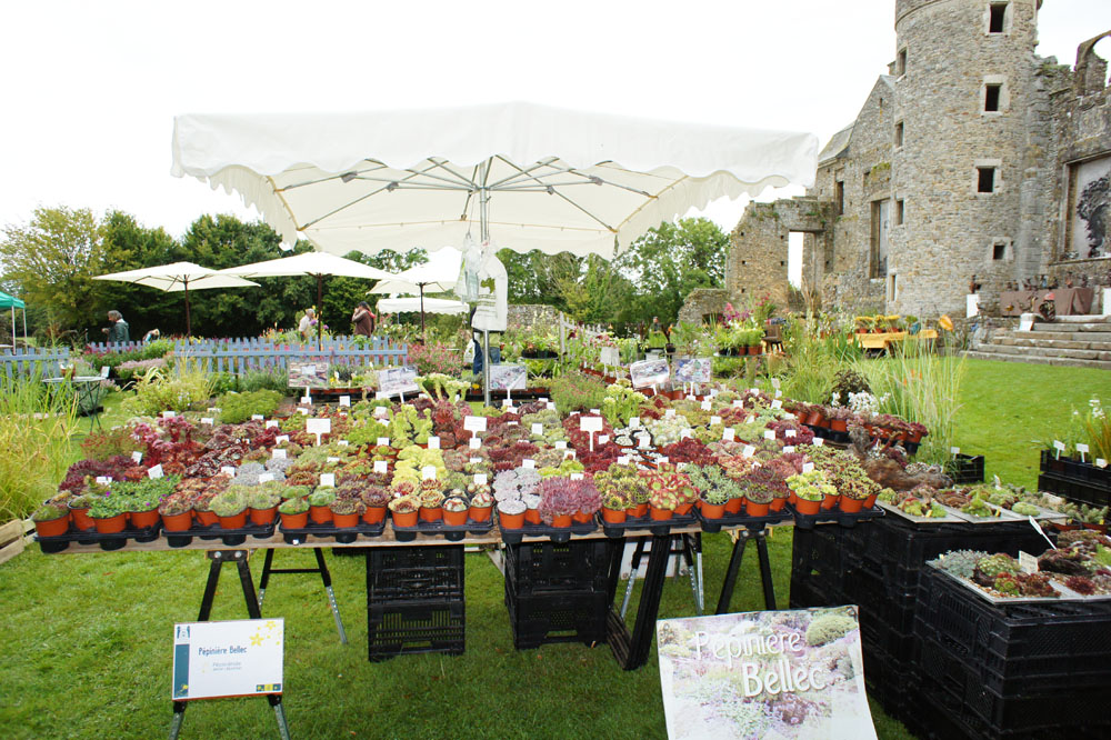 A propos du jardin chateau de gratot 50 for Jardin 16eme